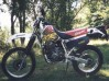 photo XR 600 R 1993